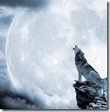 wolf moon cropped